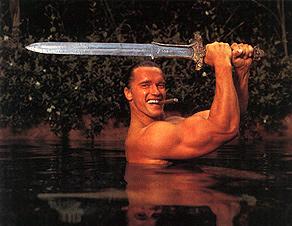 """schaffte den Durchbruch als Filmstar mit """"Conan der Barbar"""". Dies war der Beginn der großen Fitnesswelle in den 80er Jahren, die bis heute andauert."""